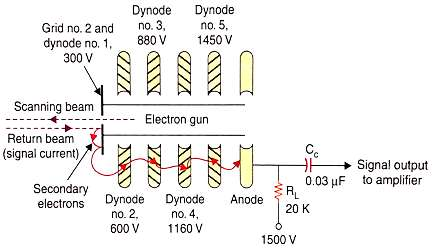 electron multiplier section